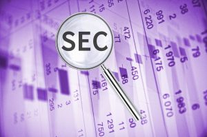 The Role and Responsibilities of the SEC